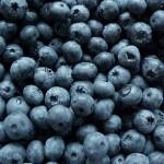 Berries Blackberries